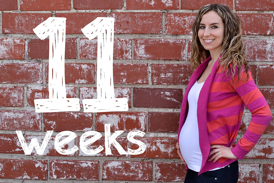 11th Week of Pregnancy – Early symptoms of pregnancy start to wane